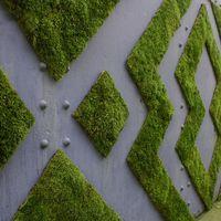 Outdoors moss mural